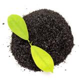 Foliar Fertilizer with High Organic Matter Free Amino Acid